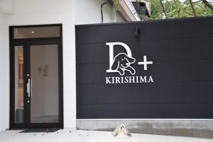 kirishima001 (37)