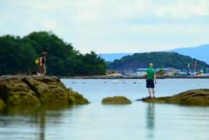 愛犬と海を独り占め