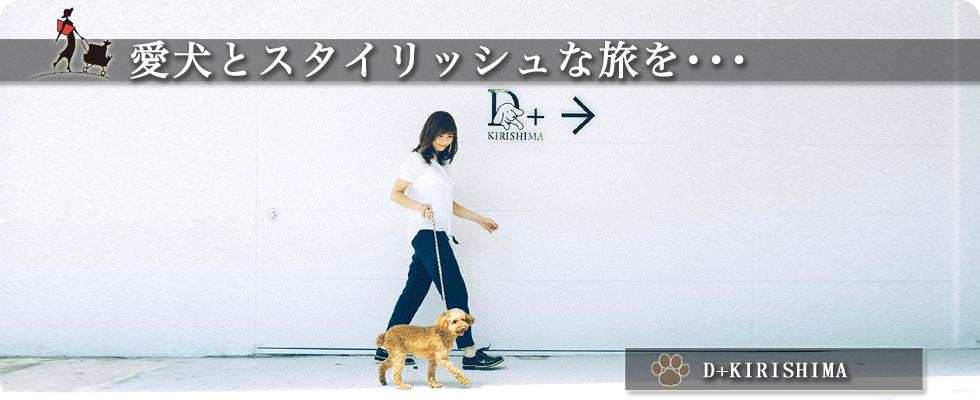 D+KIRISHIMA 鹿児島県