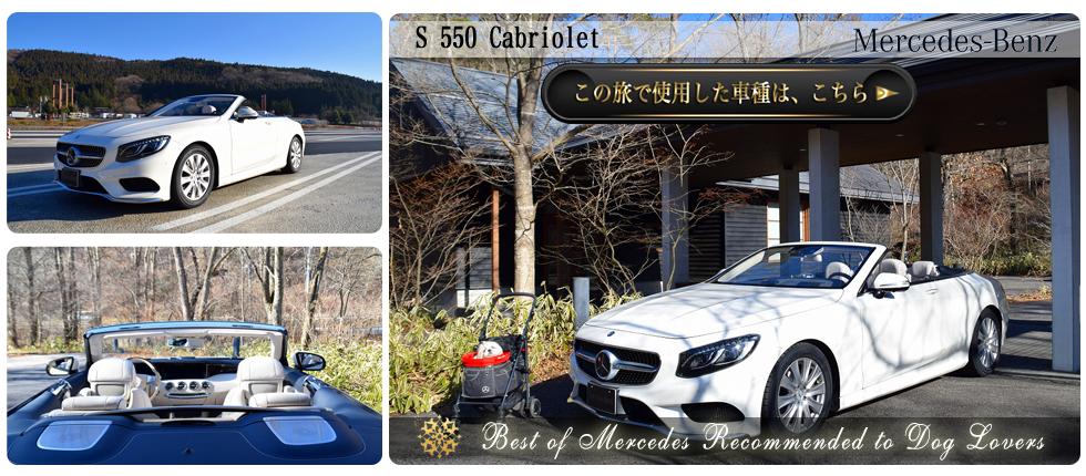 【S 550 Cabriolet】の愛犬旅適正度に中村が迫る!】愛犬との度に使用した車種の詳細をチェックする