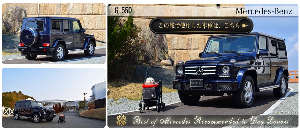 【G 550】の愛犬旅適正度に中村が迫る!】愛犬との度に使用した車種の詳細をチェックする