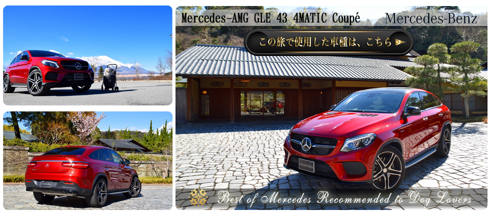 Mercedes-AMGGLE434MATICCoup