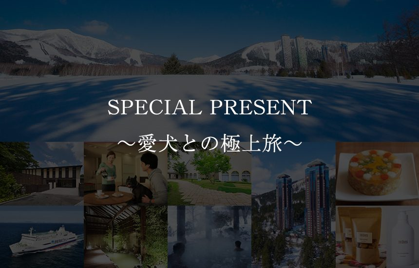 SPECIAL PRESENT~愛犬との極上旅~《冬旅》 ペットと泊まれる宿
