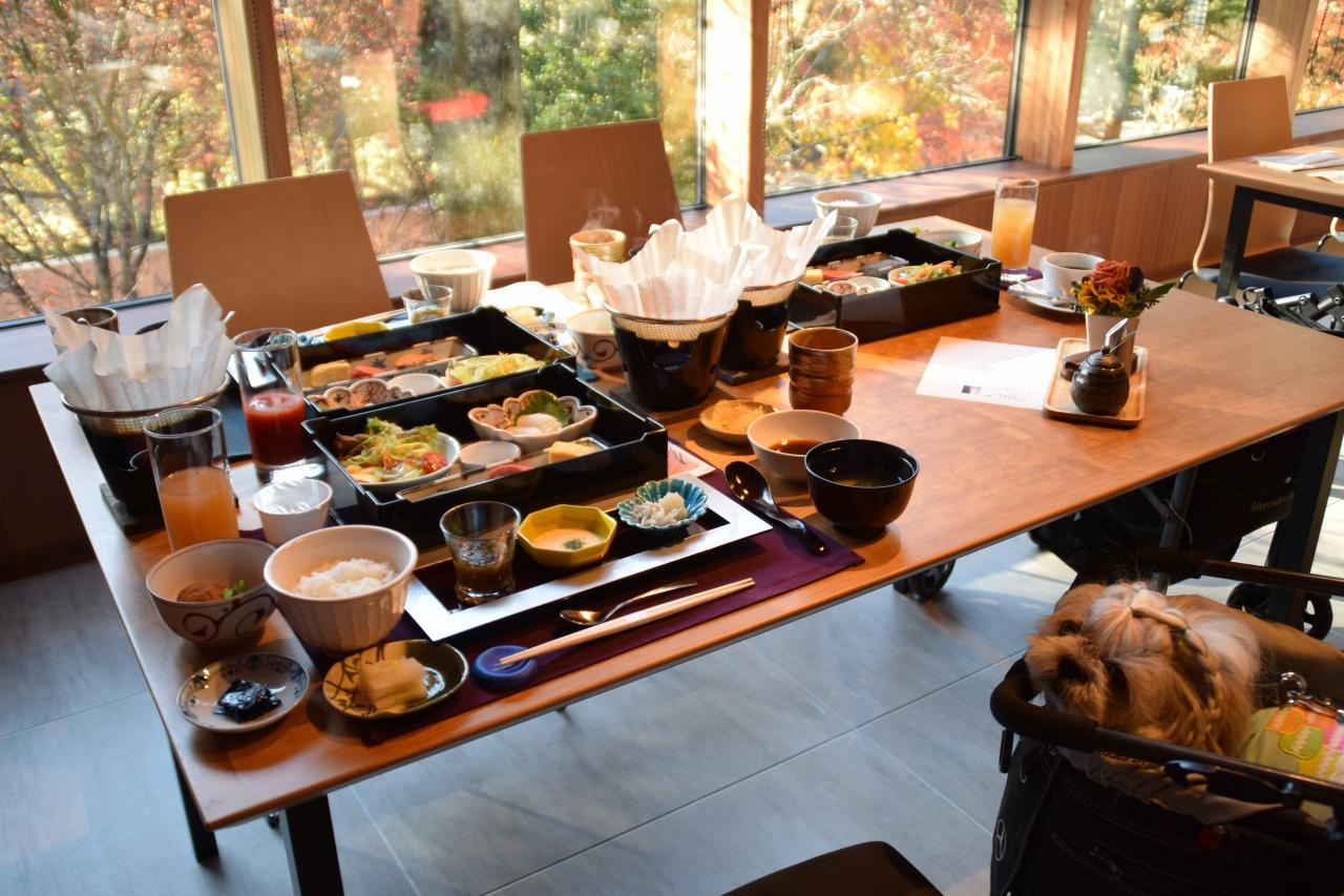 レジーナリゾート旧軽井沢 ペットと泊まれる宿
