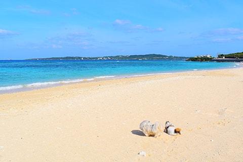 美ら海オンザビーチMOTOBU 沖縄県